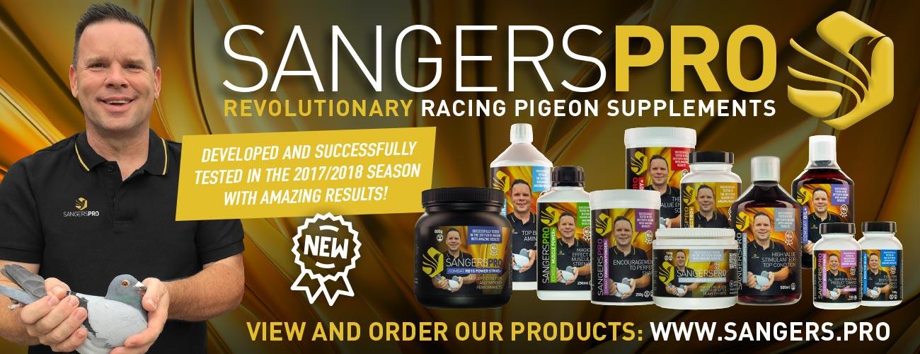 Marcel Sangers Racing Pigeons